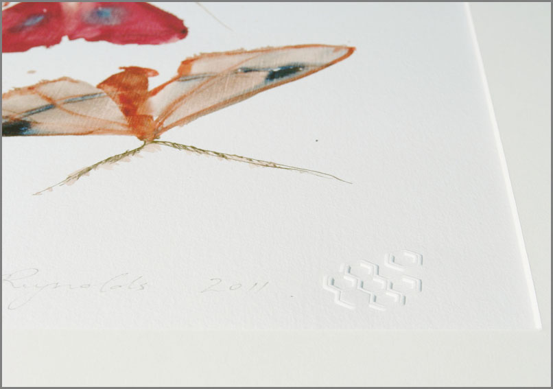 Allyson Reynolds Moths 10 Print (detail)